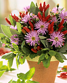 Arrangement of ornamental peppers, asters, peppermint & sage