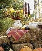 Festive Decorations for an Autumn Buffet