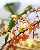 Asiatische Tischdeko: Kirschblütenzweige und Bambusmatte