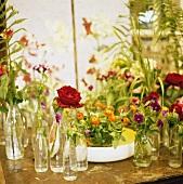 An assortment of flowers in glass bottles