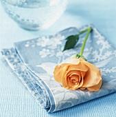 Orange rose on pale-blue fabric napkin