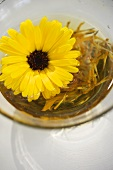 Marigold and marigold tea