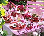 Sommerlich gedeckter Gartentisch mit Astern