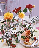 Roses in tall glass vases, branches of rose hips (table decoration)