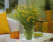 Buttercups and sorrel in vase on tray