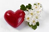 Rotes Herz und Weissdornblüten