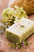 Herb and lavender soap, thyme, hydrangea and sponge