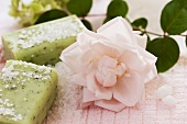 Herbal soaps and pink rose
