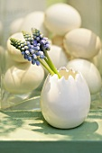 Easter decoration: grape hyacinths in a china egg