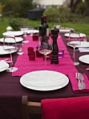 Table laid for a late summer party in the garden