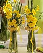 Narcissi in hyacinth glasses