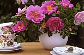 A vase of Gallica roses