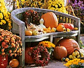 Autumnal harvest still life