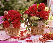 Roses in two flower pots on a table