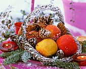 Apples, fir and pine branches in a wicker basket