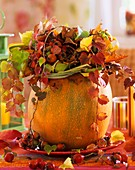 Autumn arrangement of Parthenocissus (Boston ivy)