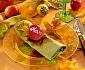 Autumnal place setting with apple