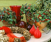 Christmas arrangement with cranberries