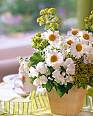 Summer posy of marguerites and lady's mantle