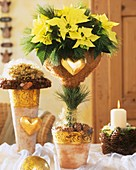Yellow poinsettia 'Lemon Snow' with Advent decorations