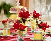 Table decoration with poinsettias and sugared apples