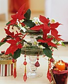 Tiered glass stand with poinsettias and Christmas roses