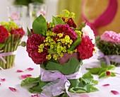 Historische Rose mit Frauenmantel im Blätterkleid