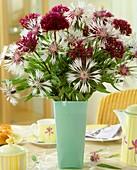 Cornflowers and ornamental onion flowers