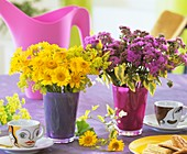 Yellow marguerites and Ageratum on table laid for coffee