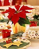 Tischdeko mit Weihnachtsstern