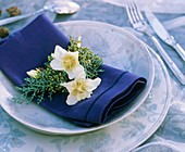 Napkin decoration of Christmas rose & Arizona cypress