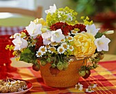 Strawberries, chamomile, lady's mantle, Campanulas and roses