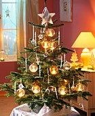 Nordmann fir with white star and glass baubles
