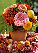 Arrangement of Zinnia, sunflower, mountain ash, ornamental gourd