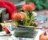 Arrangement of protea, hypericum berries & wisteria seed pods
