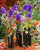 Monkshood, asters, and Chinese lanterns in beer bottles