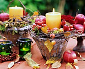 Apples & ornamental apples, rose hips & birch branches