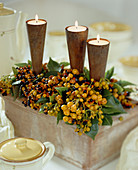 Bittersweet berries with candles