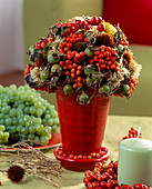 Arrangement of seed heads - rowan, rose hips, echinacea