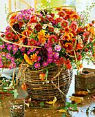 Chrysanthemums, Michaelmas daisies & Chinese lanterns in basket