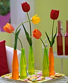 Tulips in plastic bottles & pastel-coloured flying saucers
