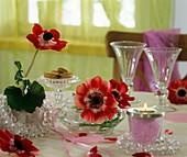 Kronenanemonen als Tischdeko