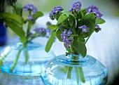 Forget-me-nots in blue bulbous vases