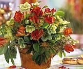 Arrangement of tulips & Lenten roses, doughnuts in background