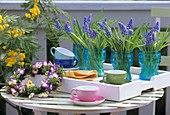 Pansy wreath, tray with cups and grape hyacinths