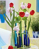 Tulips and dame's violet in various bottles