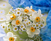 Posy of Narcissi and chamomile flowers