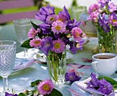 Campanulas and Michaelmas daisies on laid table