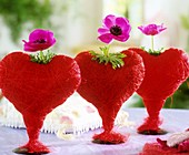 Red sisal hearts, each with an anemone, in a row
