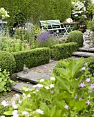 Summery garden with box hedges